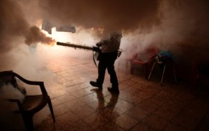 Câmara aprova projeto que intensifica medidas de combate ao Aedes aegypti