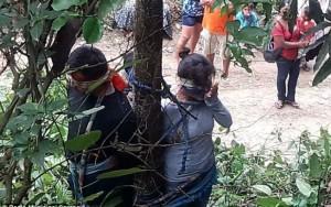 Mulher morre após levar picadas de formiga venenosa em linchamento na Bolívia