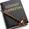 Deputados aprovam emenda do Código Florestal