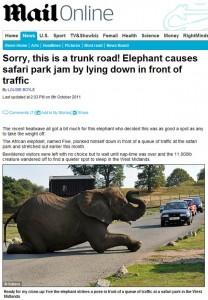 elefante-deitado-em-estrada-inglaterra