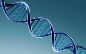 gene-cancerigeno